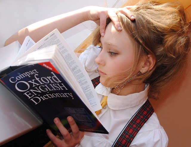 การเรียนภาษา เพื่อความก้าวหน้าในอาชีพ