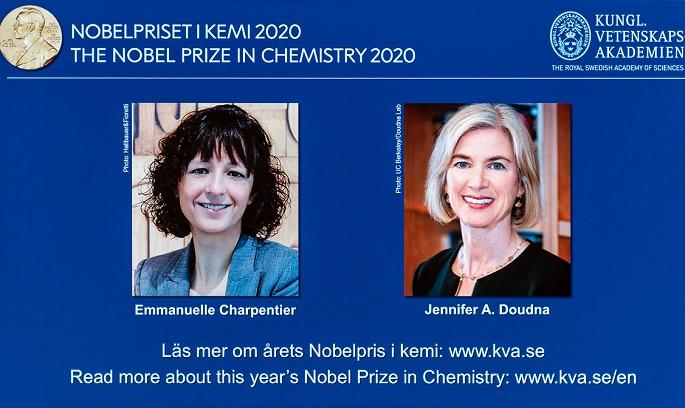 รางวัลโนเบล ด้านมนุษยศาสตร์และวิทยาศาสตร์