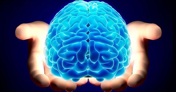 ท่าบริหารสมองBrain Gym