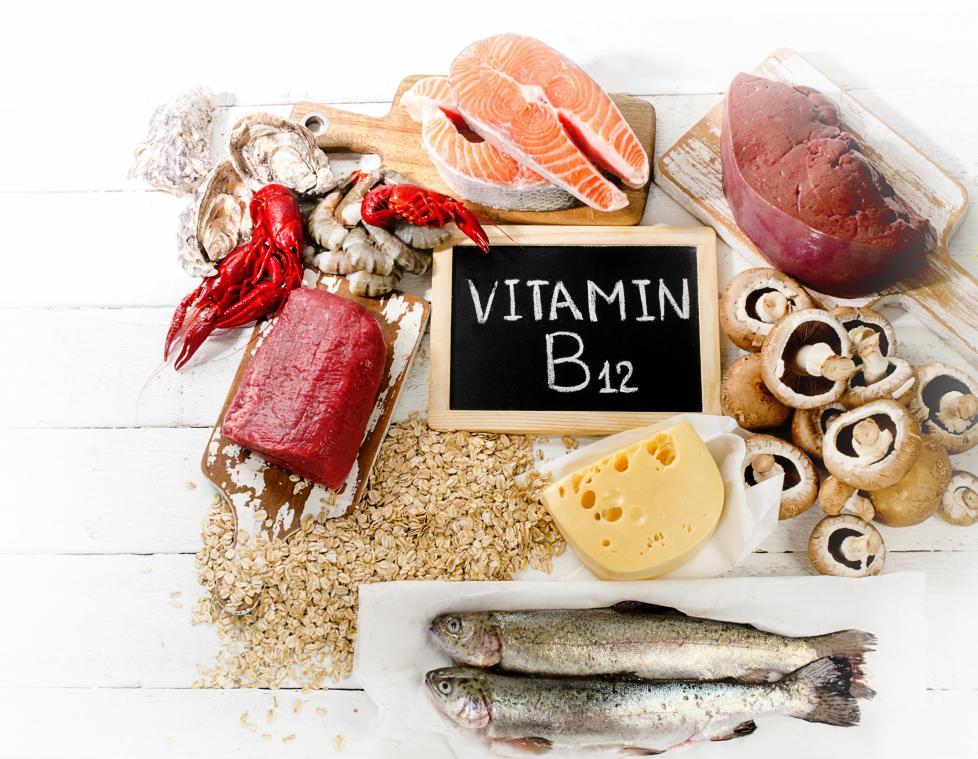 สารอาหารช่วยบำรุงสมอง วิตามินบี 12